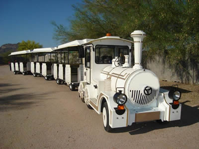 Electric Dotto trains